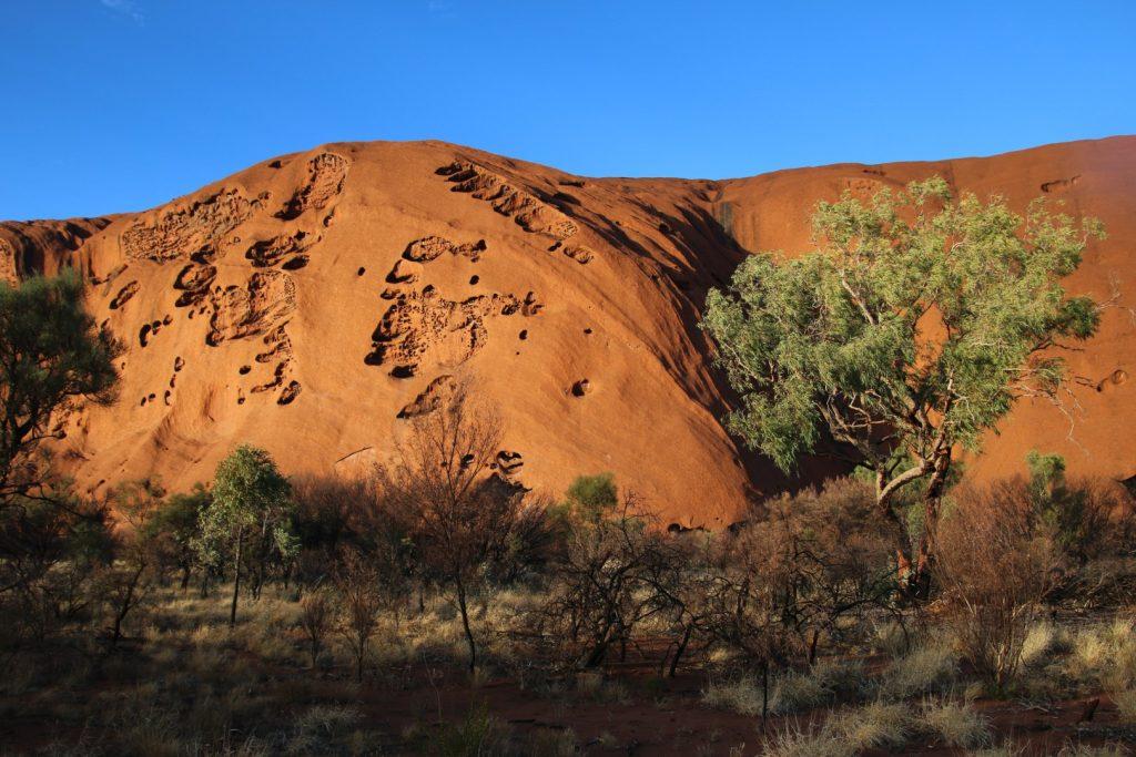 Uluru base walk at sunrise_3742 (Large)